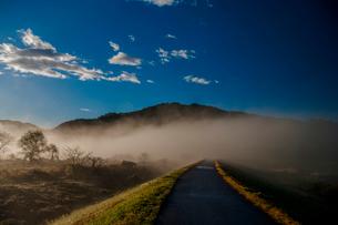 青空 雲 川霧 霧の写真素材 [FYI01783950]