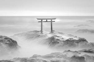 大洗磯前神社の神磯の鳥居の写真素材 [FYI01783957]