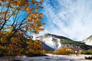 硫黄山の秋の写真素材 [FYI01784016]