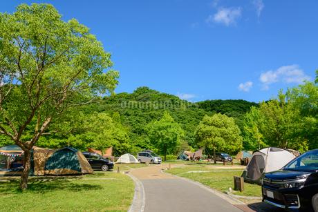 オートキャンプの写真素材 [FYI01784017]