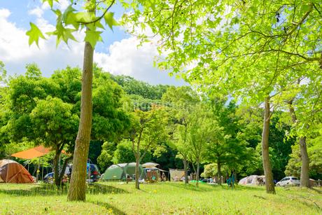 オートキャンプの写真素材 [FYI01784051]