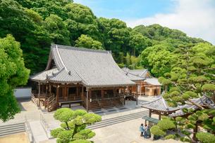 須磨寺の写真素材 [FYI01784098]