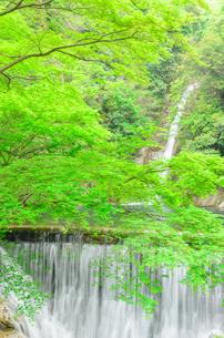 布引の滝の写真素材 [FYI01784100]