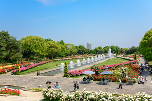 須磨離宮公園の写真素材 [FYI01784111]
