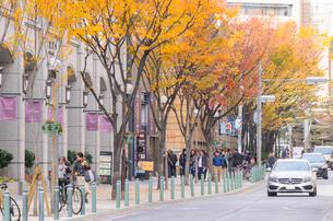 神戸旧居留地の街並みの写真素材 [FYI01784129]