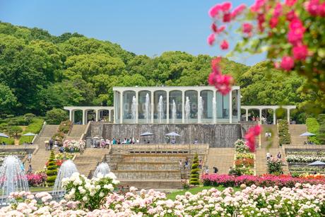 須磨離宮公園の写真素材 [FYI01784163]