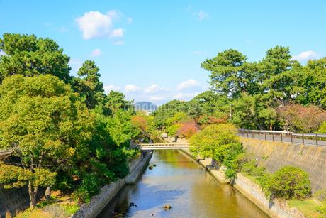 西宮市 夙川の景観の写真素材 [FYI01784170]