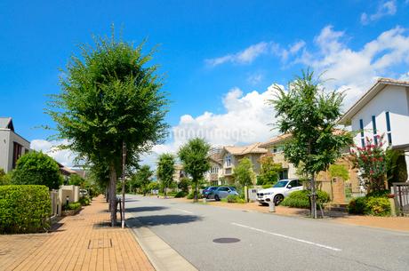 関西の住宅の写真素材 [FYI01784182]