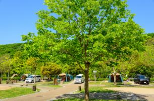 オートキャンプ場の写真素材 [FYI01784233]