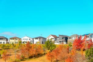 関西の住宅の写真素材 [FYI01784245]