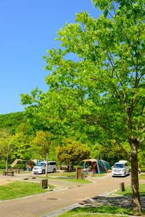 オートキャンプ場の写真素材 [FYI01784246]
