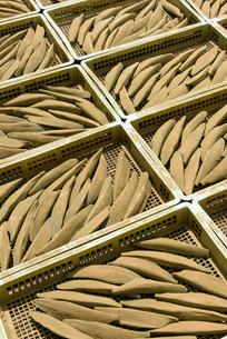 鰹節の天日干しの写真素材 [FYI01784263]