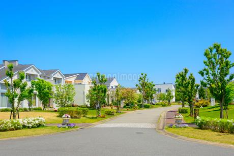 関西の住宅の写真素材 [FYI01784339]