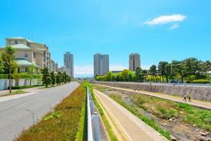 関西の住宅の写真素材 [FYI01784377]