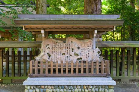 夏の天岩戸神社の写真素材 [FYI01784556]