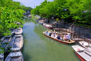 初夏の柳川川下りの写真素材 [FYI01784635]