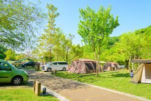 オートキャンプ場の写真素材 [FYI01784656]