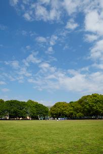 赤塚公園の写真素材 [FYI01784702]
