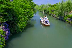 初夏の柳川川下りの写真素材 [FYI01784727]
