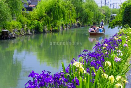 初夏の柳川川下りの写真素材 [FYI01784776]