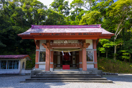 野間神社本殿の写真素材 [FYI01784878]
