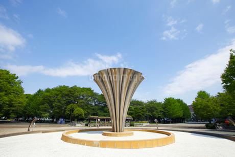 赤塚公園の写真素材 [FYI01784924]