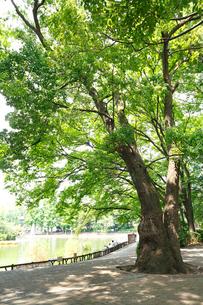 見次公園の写真素材 [FYI01785001]