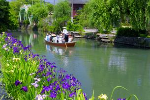初夏の柳川川下りの写真素材 [FYI01785033]