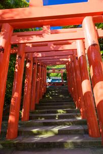 鵜戸神宮 鵜戸稲荷神社の写真素材 [FYI01785035]