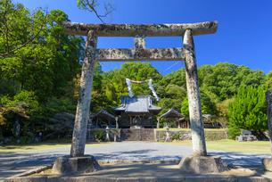 秋の竹田神社の写真素材 [FYI01785048]