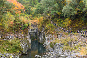 秋の高千穂峡谷の写真素材 [FYI01785168]