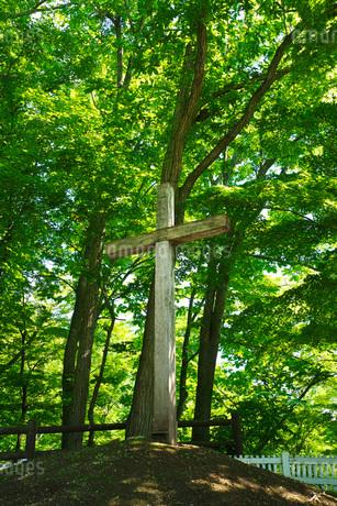 キリストの里公園 キリストの墓の写真素材 [FYI01785195]