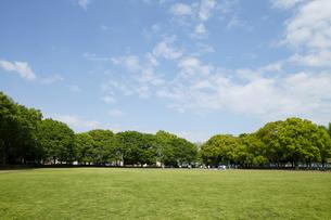 赤塚公園の写真素材 [FYI01785207]