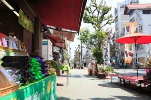 甘酒横町の写真素材 [FYI01785886]