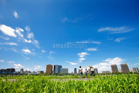 多摩川緑地野球場 川崎ビル群の写真素材 [FYI01786069]