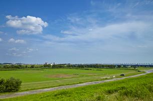 江戸川河川敷野球場の写真素材 [FYI01786379]