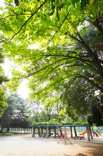 稲村西山公園の写真素材 [FYI01786550]