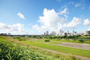 多摩川 丸子橋緑地の写真素材 [FYI01786679]