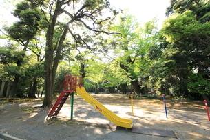 赤坂氷川神社境内遊び場の写真素材 [FYI01786757]