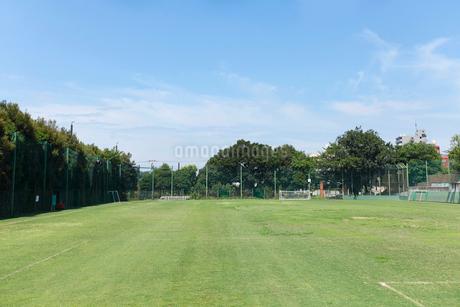 井草森公園運動場の写真素材 [FYI01786809]