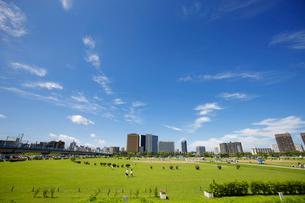 多摩川緑地野球場 川崎ビル群の写真素材 [FYI01786927]