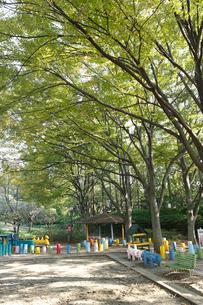 しながわ区民公園の写真素材 [FYI01787096]