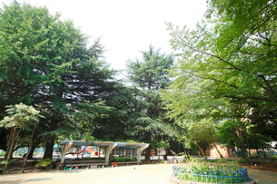 稲村西山公園の写真素材 [FYI01787159]