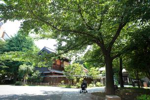 宮本公園の写真素材 [FYI01787237]