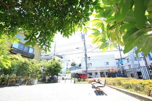 台あらかし公園の写真素材 [FYI01787241]