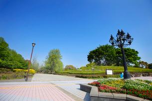 県立柏の葉公園の写真素材 [FYI01787357]