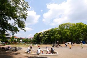 東板橋公園の写真素材 [FYI01787536]