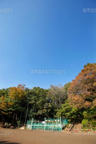 本門寺公園の写真素材 [FYI01787659]