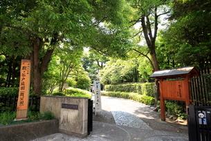 都立殿ヶ谷庭園の写真素材 [FYI01788099]