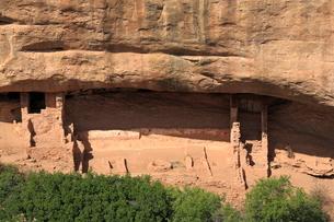 メサ・ベルデ国立公園インディアン洞窟住居の写真素材 [FYI01788253]